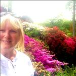 Profile Image Diane Ainsworth